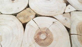 applebee-twiggy-2-2-1580504534-1580505337-1580820842-1580942629.jpg